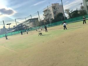 女子硬式テニス2